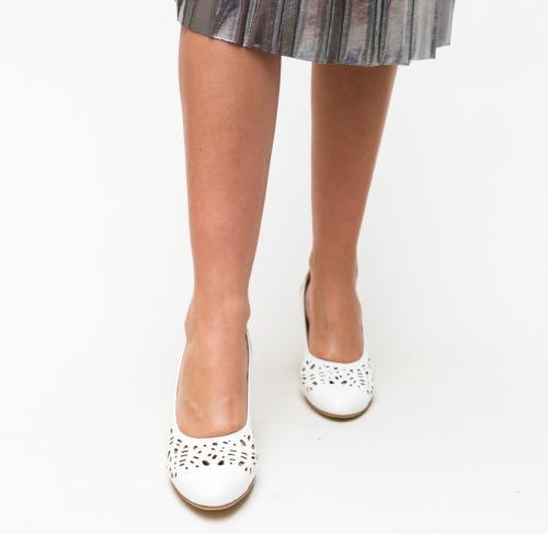 Pantofi Andy Albi - Pantofi - Pantofi cu toc gros
